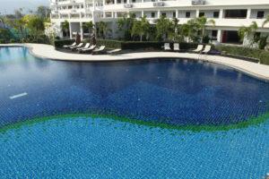 บริการออกแบบสระว่ายน้ำ Freeform