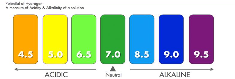 แถบแสดงค่า pH
